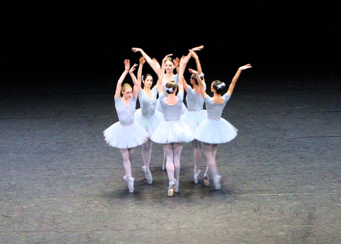 Watch This Very Funny Ballet Performed In Vienna State Opera