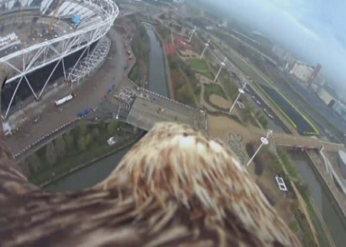 See How London Looks Like From The Back Of An Eagle