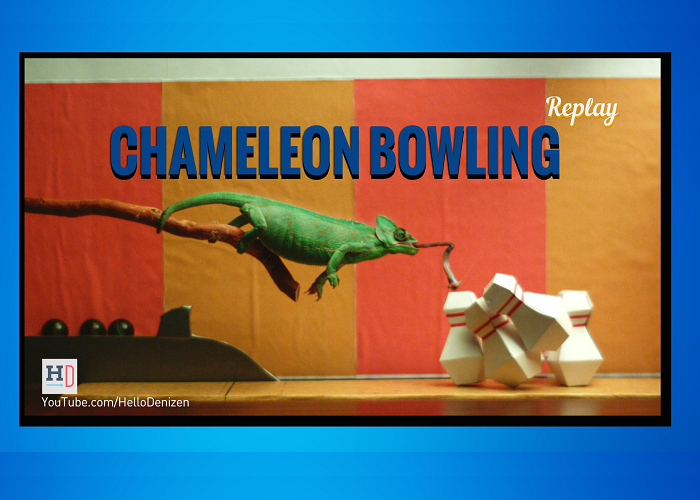 Do You Think Chameleon Bowling Could Be A REAL Sport?!